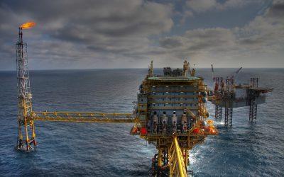 Wie die Natur das Öl verdaut